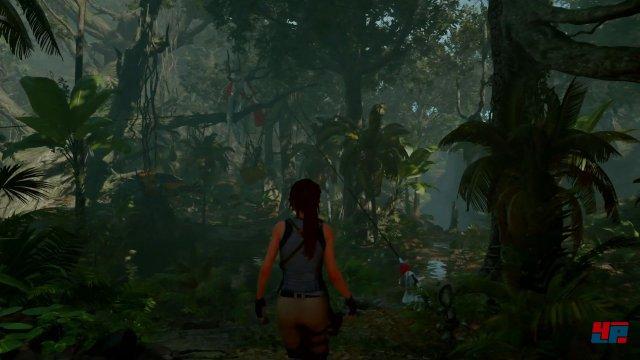 Der Dschungel sieht einfach klasse aus!