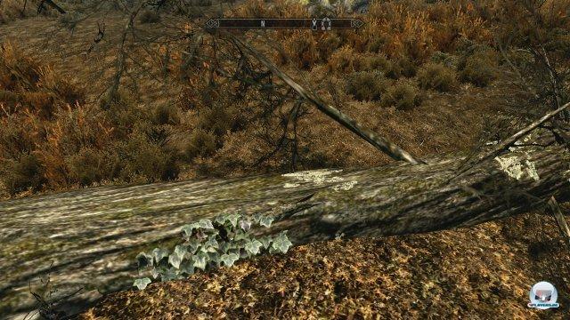 Screenshot - The Elder Scrolls V: Skyrim (360) 2286157