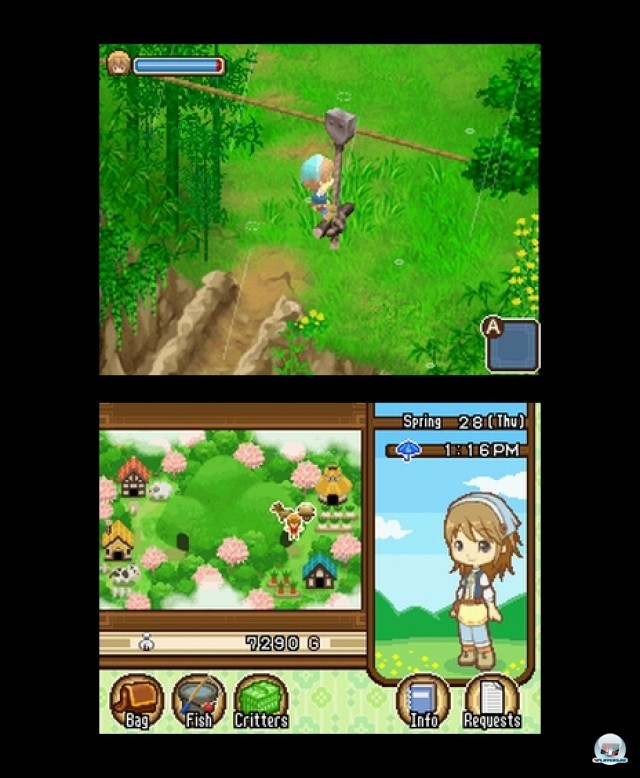 Screenshot - Harvest Moon: The Tale of Two Towns (NDS) 2232099