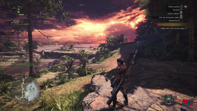 Monster Hunter World bietet eine stimmungsvolle Kulisse mit vielen Details und schicken Lichteffekten.