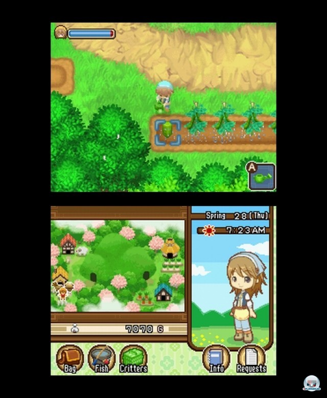 Screenshot - Harvest Moon: The Tale of Two Towns (NDS) 2232028