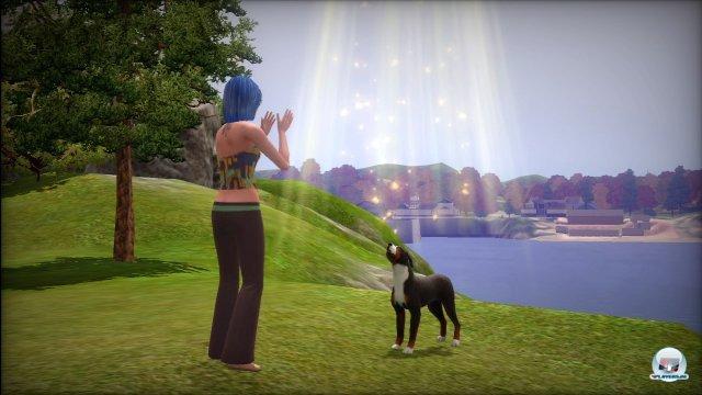 Screenshot - Die Sims 3: Einfach tierisch (PC) 2275412