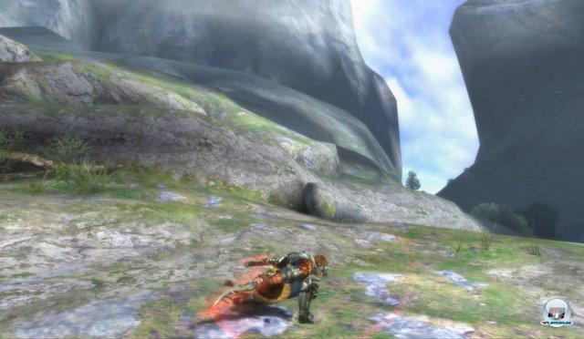 Screenshot - Monster Hunter 3 Ultimate (Wii_U) 92452237