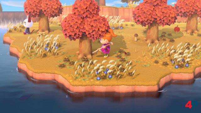 Screenshot - Animal Crossing: New Horizons (Switch) 92590033