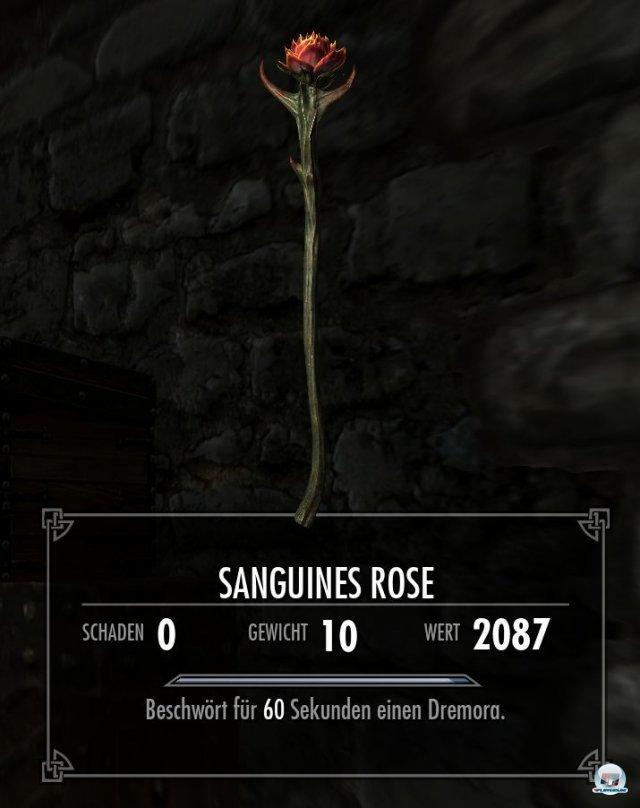 Screenshot - The Elder Scrolls V: Skyrim (360) 2290747