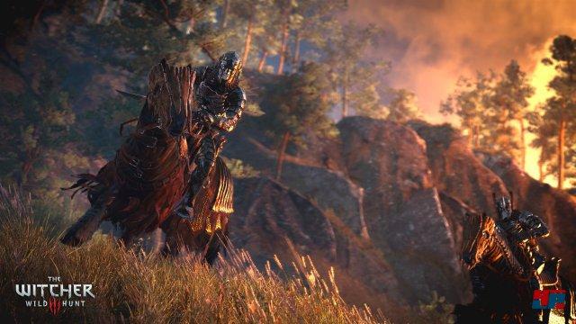 Screenshot - The Witcher 3: Wild Hunt (PC) 92484548