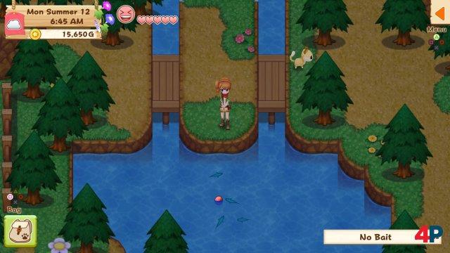 Screenshot - Harvest Moon: Light of Hope (PS4) 92595808