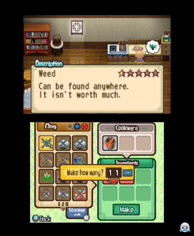 Screenshot - Harvest Moon: The Tale of Two Towns (3DS) 2232199