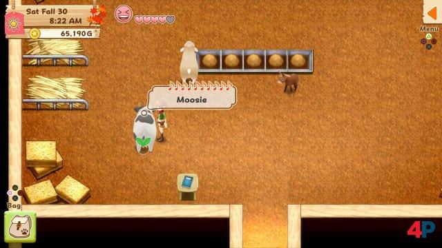 Screenshot - Harvest Moon: Light of Hope (PS4) 92595805