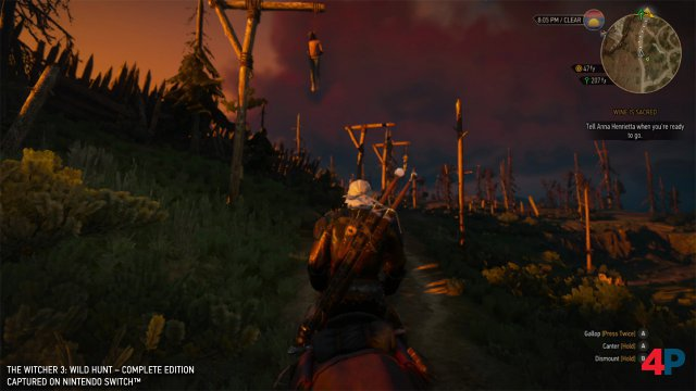 Screenshot - The Witcher 3: Wild Hunt (Switch) 92594586