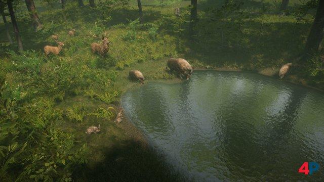 Screenshot - Natural Instincts (PC)