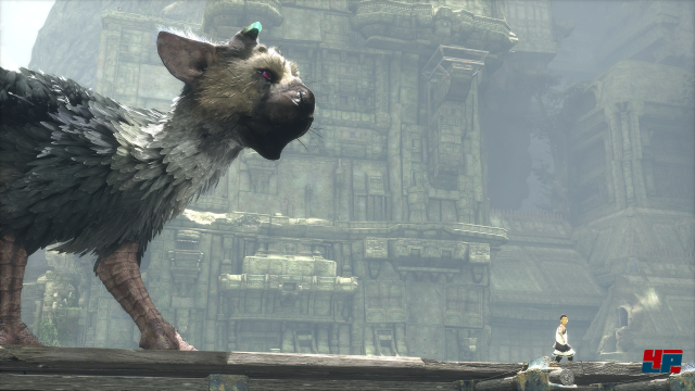 Screenshot - The Last Guardian (PS4) 92537326