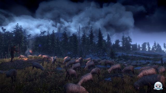 Screenshot - The Witcher 3: Wild Hunt (PC) 92456569