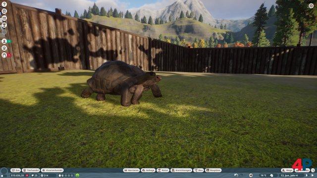 Clippingfehler oder Mutantenschildkröte?
