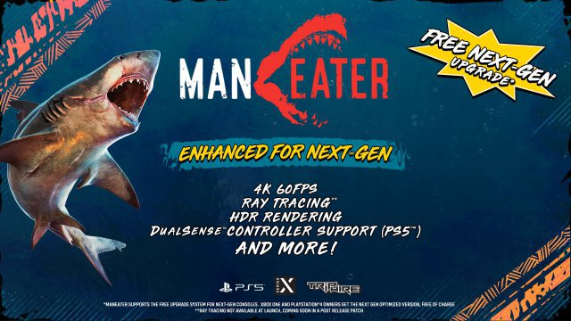 Screenshot - Maneater (PC, PlayStation5, XboxSeriesX)