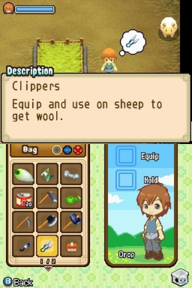 Screenshot - Harvest Moon: The Tale of Two Towns (NDS) 2231968