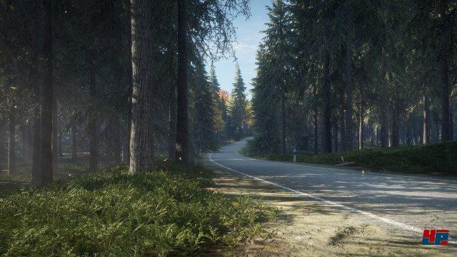 Screenshot - theHunter: Call of the Wild (PC) 92537061
