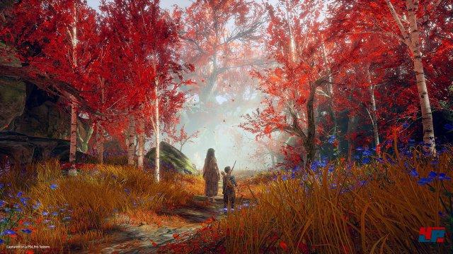 Screenshot - God of War (PS4) 92561711
