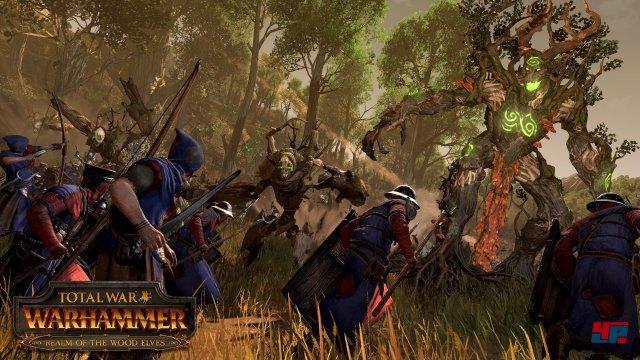 Screenshot - Total War: Warhammer (Linux) 92536721