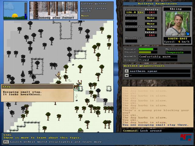 Screenshot - Unreal World (Linux) 92520769
