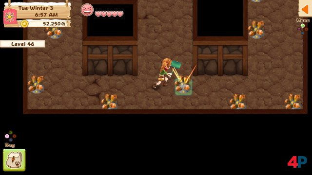 Screenshot - Harvest Moon: Light of Hope (PS4) 92595806