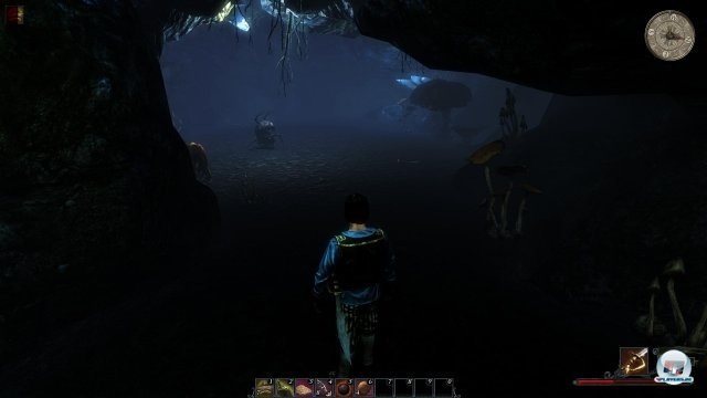 Screenshot - Risen 2: Dark Waters (PC) 2345807