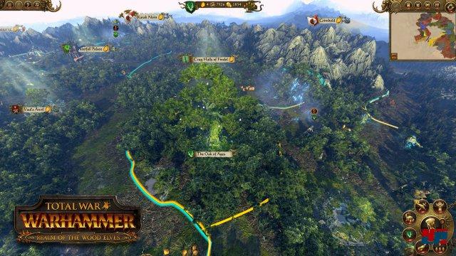 Screenshot - Total War: Warhammer (Linux) 92536715