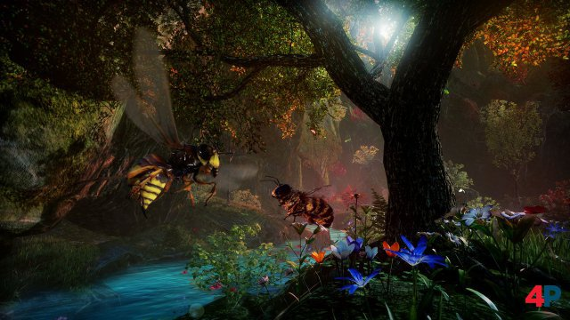 Screenshot - Bee Simulator (PC) 92594632