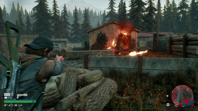 Screenshot - Days Gone (PlayStation4Pro)