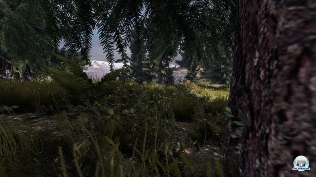 Screenshot - The War Z (PC)