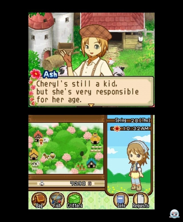 Screenshot - Harvest Moon: The Tale of Two Towns (NDS) 2232059