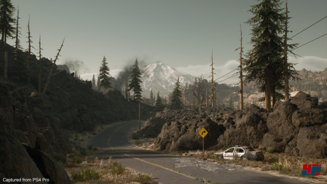 Screenshot - Days Gone (PlayStation4Pro) 92585142