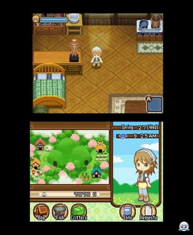 Screenshot - Harvest Moon: The Tale of Two Towns (NDS) 2232027
