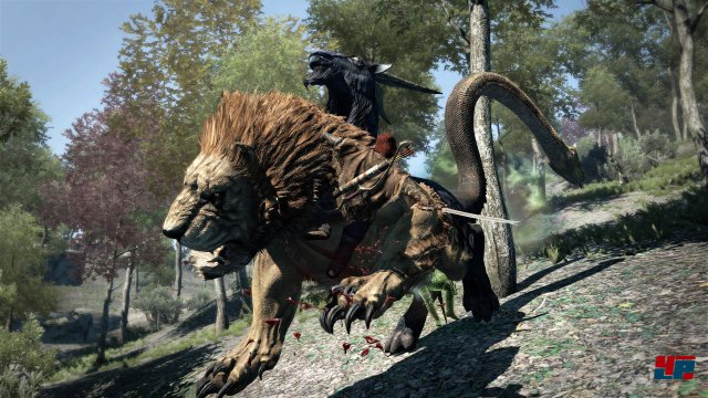 Screenshot - Dragon's Dogma: Dark Arisen (PS4) 92550627
