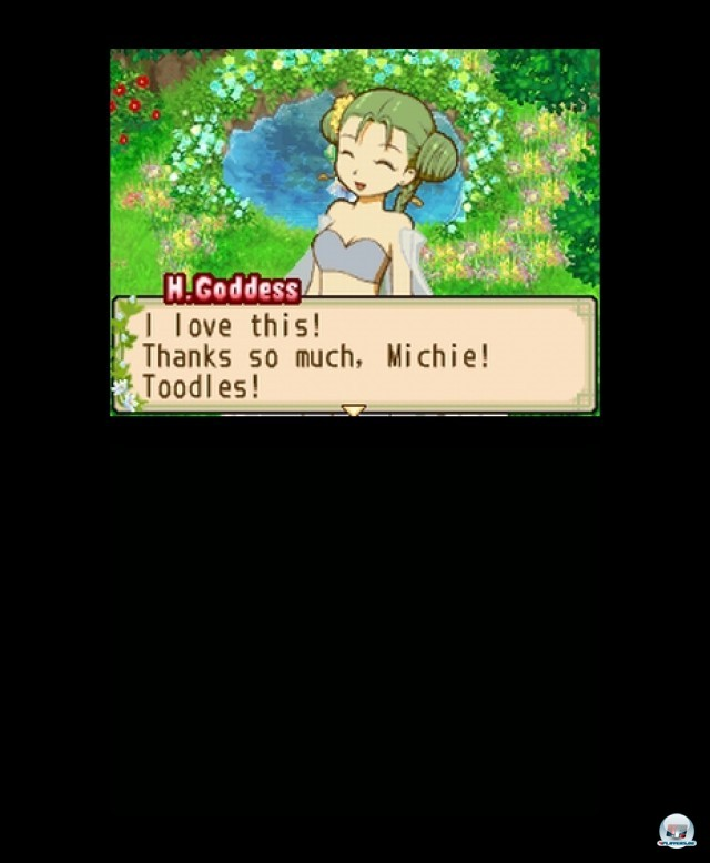 Screenshot - Harvest Moon: The Tale of Two Towns (NDS) 2232034