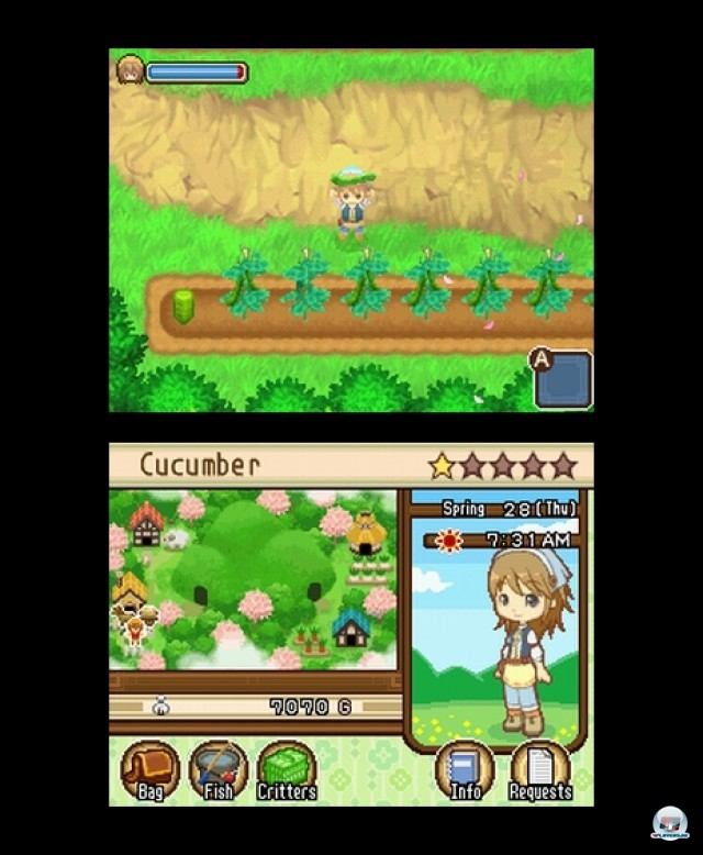 Screenshot - Harvest Moon: The Tale of Two Towns (NDS) 2232033