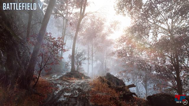 Screenshot - Battlefield 5 (PC) 92575845