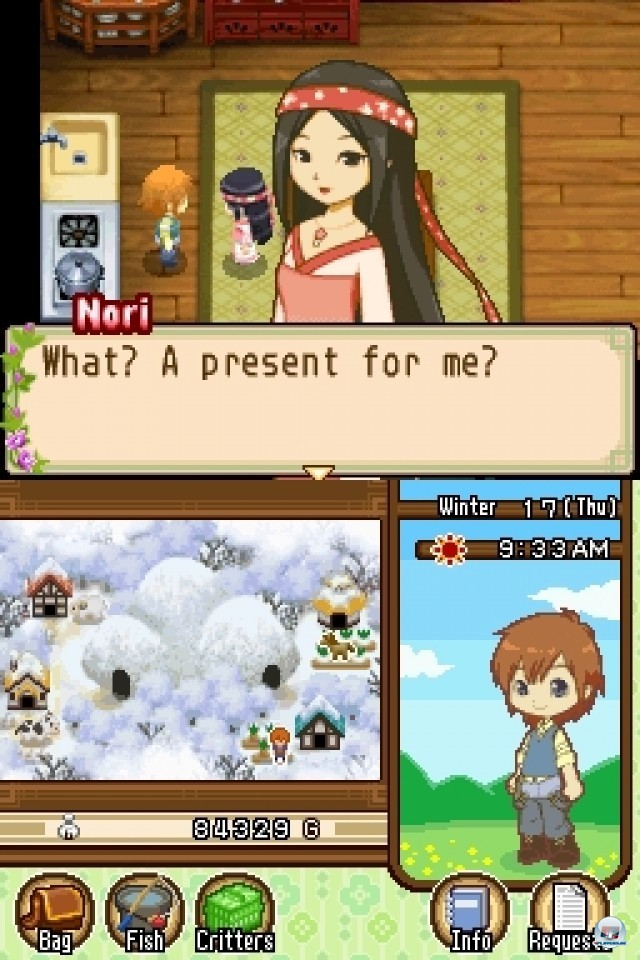 Screenshot - Harvest Moon: The Tale of Two Towns (NDS) 2231983