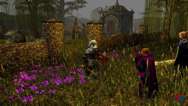 Screenshot - Neverwinter Nights: Enhanced Edition (PC)