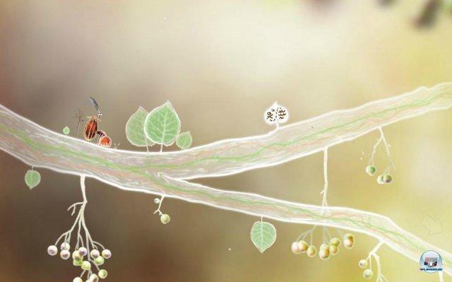 Screenshot - Botanicula (PC) 2343502