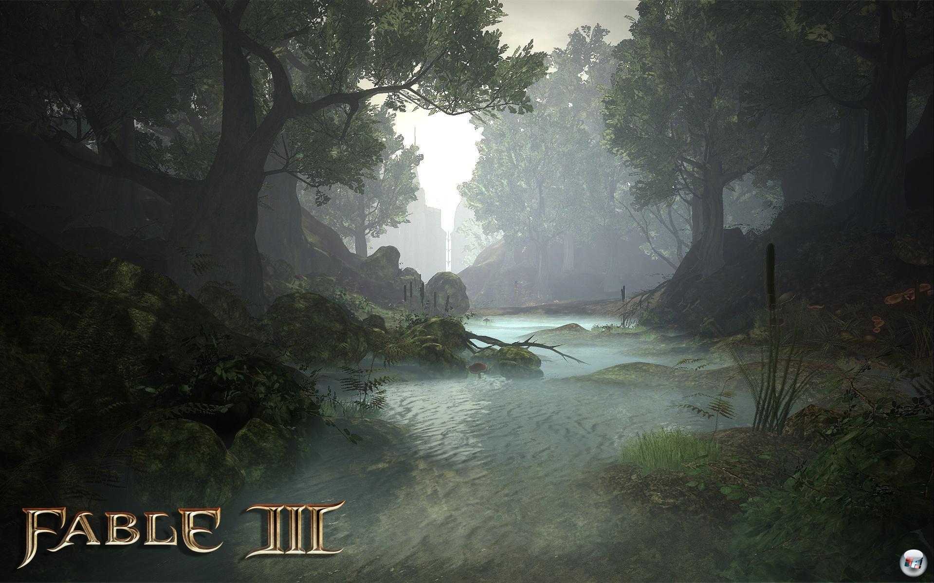 Auf potenten PCs hat Albion gegenüber der 360-Version visuell einige Detail-Verbesserungen zu bieten.
