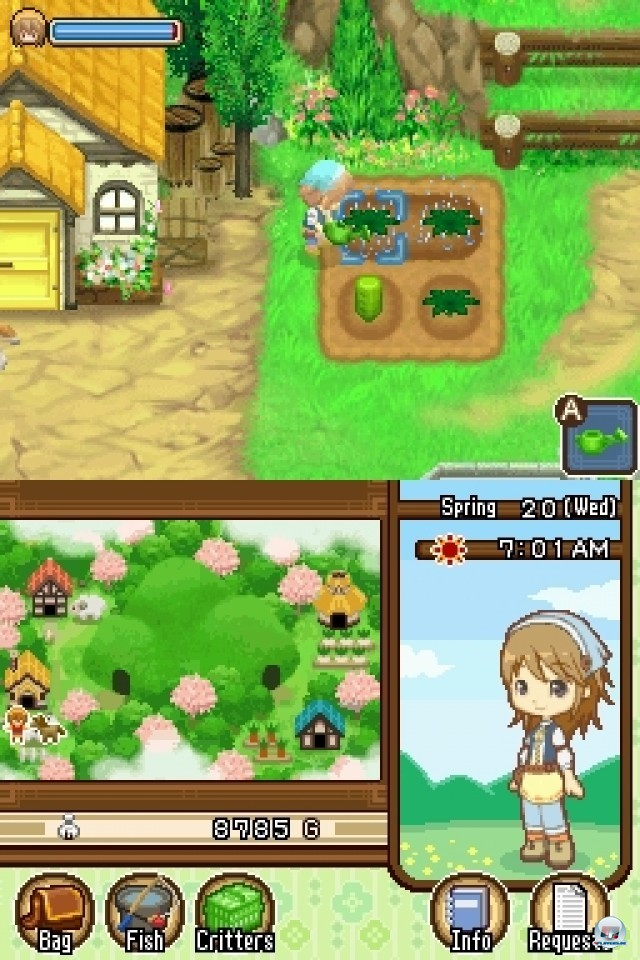 Screenshot - Harvest Moon: The Tale of Two Towns (NDS) 2231992