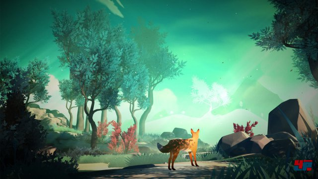 Screenshot - The First Tree (PC) 92529745
