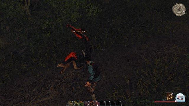 Screenshot - Risen 2: Dark Waters (PC) 2345767