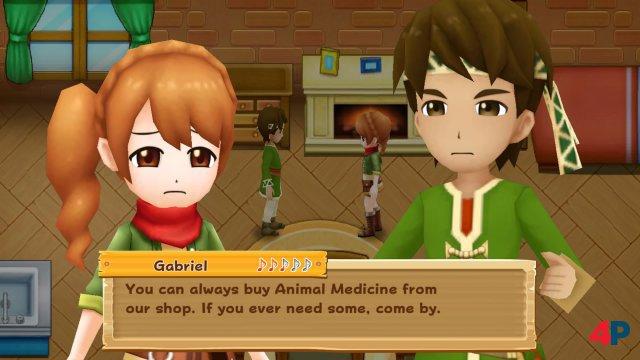 Screenshot - Harvest Moon: Light of Hope (PS4) 92595807