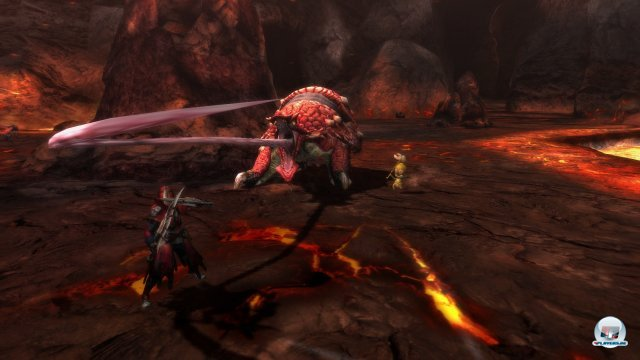 Screenshot - Monster Hunter 3 Ultimate (Wii_U) 92452292