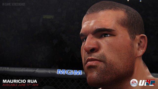 Screenshot - EA Sports UFC (PlayStation4) 92482794