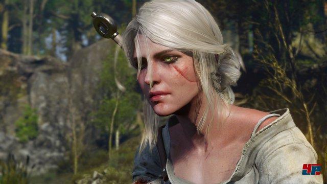Screenshot - The Witcher 3: Wild Hunt (PC) 92496465