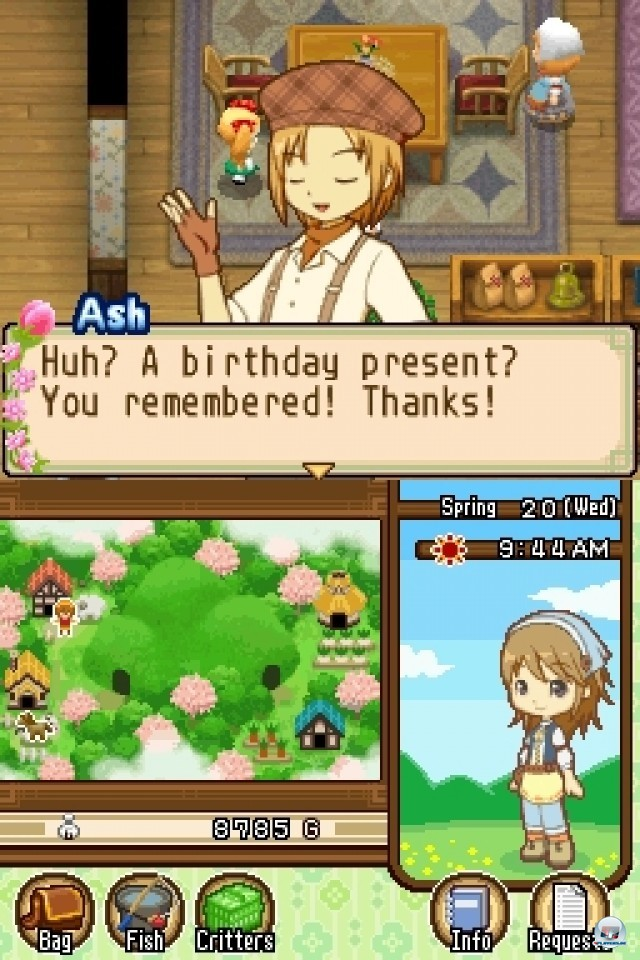 Screenshot - Harvest Moon: The Tale of Two Towns (NDS) 2232003