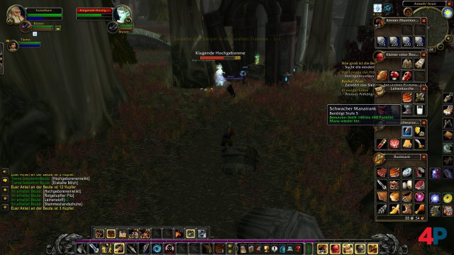 Screenshot - World of WarCraft Classic (PC) 92595716